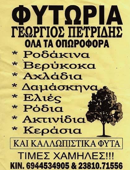 ΠΕΤΡΙΔΟΥ