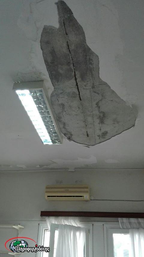 tavani3